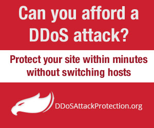 Can You Afford A DDoS Attack?